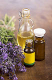 Herbal lavender and essential oil Stock Image