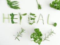 herbal fotografia stock libera da diritti