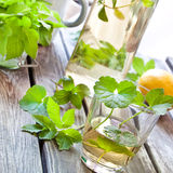 Herbal limonade Royalty Free Stock Photos