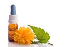 Herbal liquid Stock Image