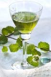 Herbal liquor drop Royalty Free Stock Photo