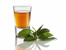 Herbal liquor. In shot glass and herbs isolated on white background Stock Photography