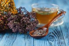 Herbal medecine: Cup with linden tea royalty free stock photos