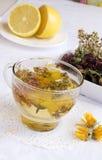 Herbal medical tea with lemon Stock Image