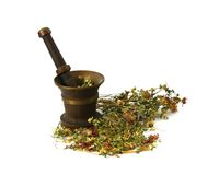 Herbal, Medicinal Grasses ,grasses For Sorcery Royalty Free Stock Photography