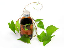 Herbal medicine - 01. A bottle of herbal syrup and herbal plant Stock Photo