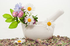Herbal medicine. (healing herbs, mortar and pestle Stock Images
