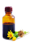 Herbal medicine Royalty Free Stock Images