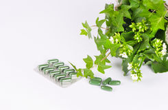 Herbal medicine. Isolated on white background Stock Image
