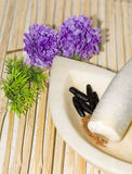 Herbal Medicine. With mortar and pestle Royalty Free Stock Photos