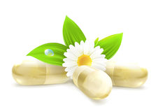 Herbal medicine. Computer illustration on white background Royalty Free Stock Image