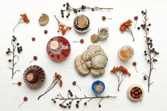 Herbal medicine. Alternative medicine concept. Dry organic natural ingridients. Wild berry medicinal tincture shelf fungus and other organic ingridients on stock images