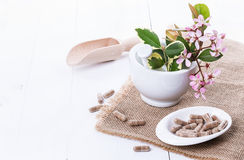 Herbal medicine capsules over white Stock Images