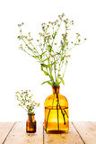 Herbal medicine concept - bottle with camomile Royalty Free Stock Photos