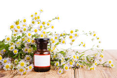 Herbal medicine concept - bottle with camomile on wooden table Stock Photos