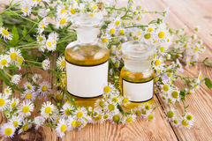 Herbal medicine concept - bottle with camomile on wooden table Stock Photo