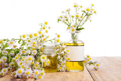 Herbal medicine concept - bottles with camomile and oil on woode Royalty Free Stock Image