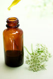 Herbal medicine with dropper bottle royalty free stock photos