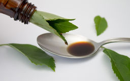Herbal medicine extract Stock Photography