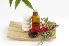 Herbal medicine and flower Stock Images