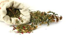 Herbal medicine,grasses for sorcery Stock Image
