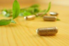 Herbal medicine. Herb capsule with green herbal leaf Stock Image