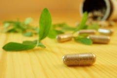 Herbal medicine. Herb capsule with green herbal leaf Stock Photo