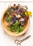 Herbal medicine. Herbs and flowers Stock Photos