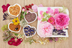 Herbal Medicine Ingredients Stock Photos