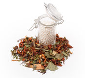 Herbal medicine. Isolated herbal medicines with a bottle of homeopathic medicine Stock Images