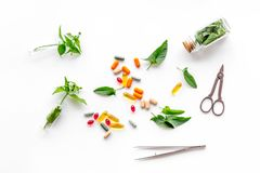 Herbal medicine. Leaves, bottles, pills and sciccors on white background top view Stock Photography