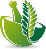 Herbal medicine logo stock photo