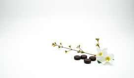 Herbal medicine lozenges for relief cough put near white flower and branch with copy space. Royalty Free Stock Image