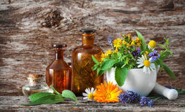 Herbal medicine. Medicinal plants. Tincture bottles and healing herbs in mortar on wooden table. Herbal medicine. Medicinal plants Stock Image