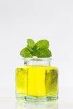 Herbal medicine  with mint Stock Photos