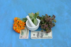 Herbal medicine and money concept - health is money Stock Photo