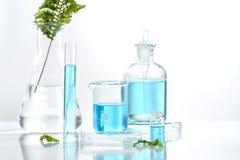 Herbal medicine natural organic and scientific glassware, Research and development concept.  stock image