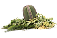 Herbal medicine. Over white background Royalty Free Stock Photos