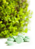 Herbal medicine pills with green plant Royalty Free Stock Images