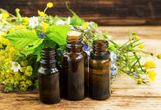 Herbal medicine with plants extracts and essence bottles Royalty Free Stock Images