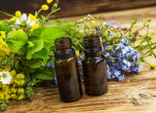 Herbal medicine with plants extracts and essence bottles Stock Photography