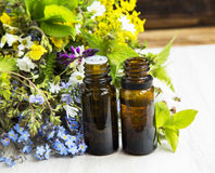 Herbal medicine with plants extracts and essence bottles Royalty Free Stock Photo