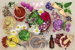Herbal Medicine Preparation. With herbs and flowers, aromatherapy essential oil bottle and mortar with pestle on hemp paper background. Top view Stock Images