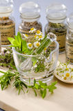 Herbal Medicine. Royalty Free Stock Photo