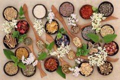 Herbal Medicine Selection Royalty Free Stock Photo
