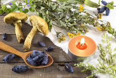 Herbal medicine still life 3 Royalty Free Stock Photography