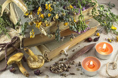 Herbal medicine still life 7 Royalty Free Stock Images