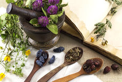 Herbal medicine still life 6 Royalty Free Stock Images