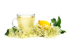 Herbal medicine tea Royalty Free Stock Photos