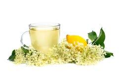 Herbal medicine tea. With elder flower Royalty Free Stock Photos
